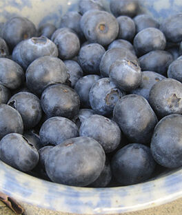 Blueberry, Cara's Choice, , large